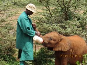 Kenya day one 2