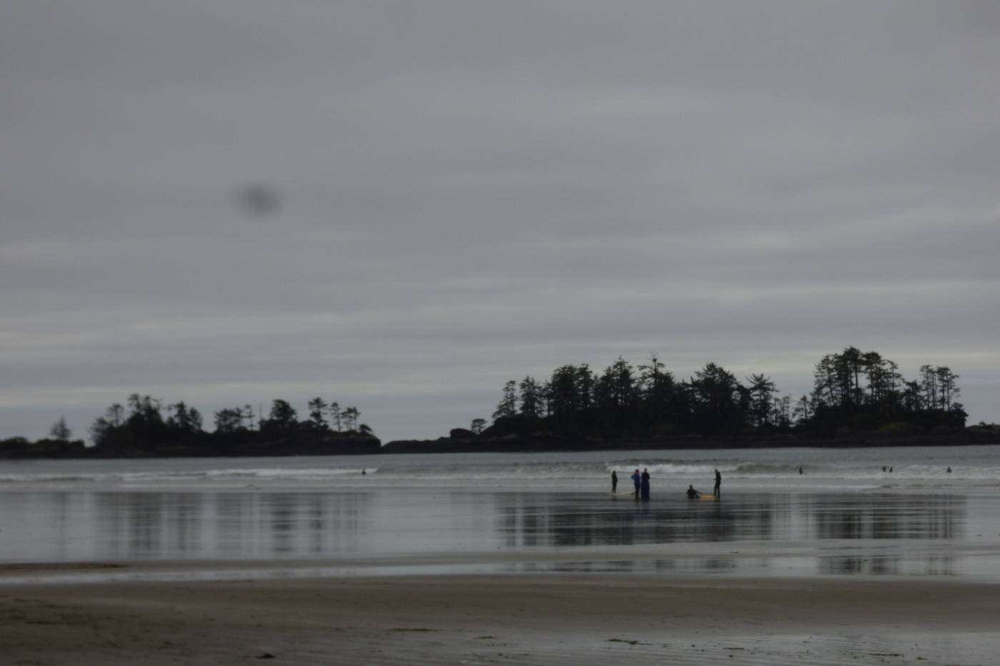 Tofino Bc Day 2 Tide Pools Surfers And Sand Dollars